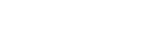 vice-logo-white